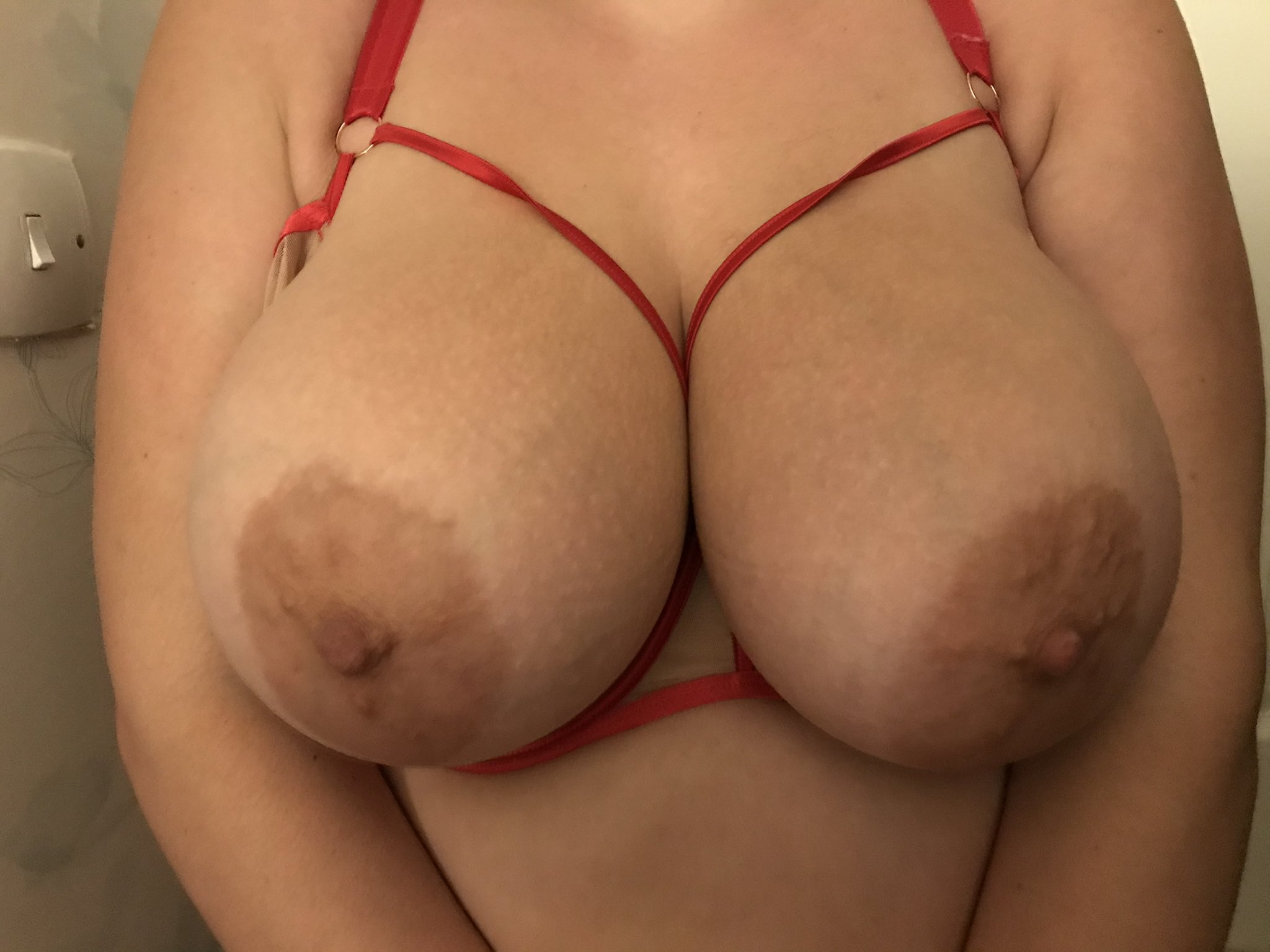 bustylandlady boobs