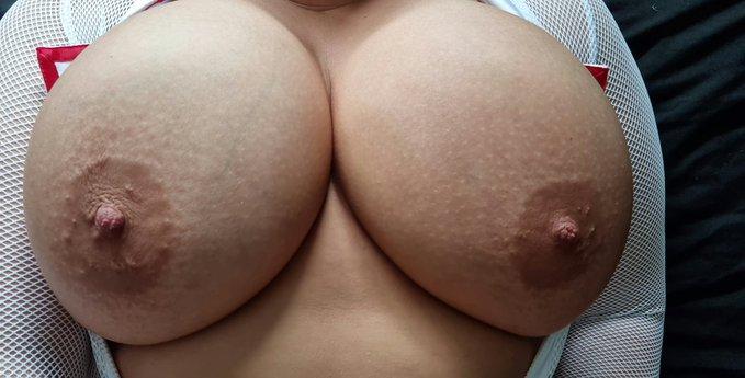 lilyhmasked boobs